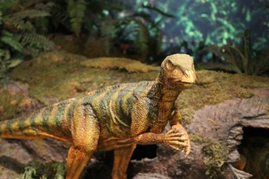 dinosaur-597148_1920